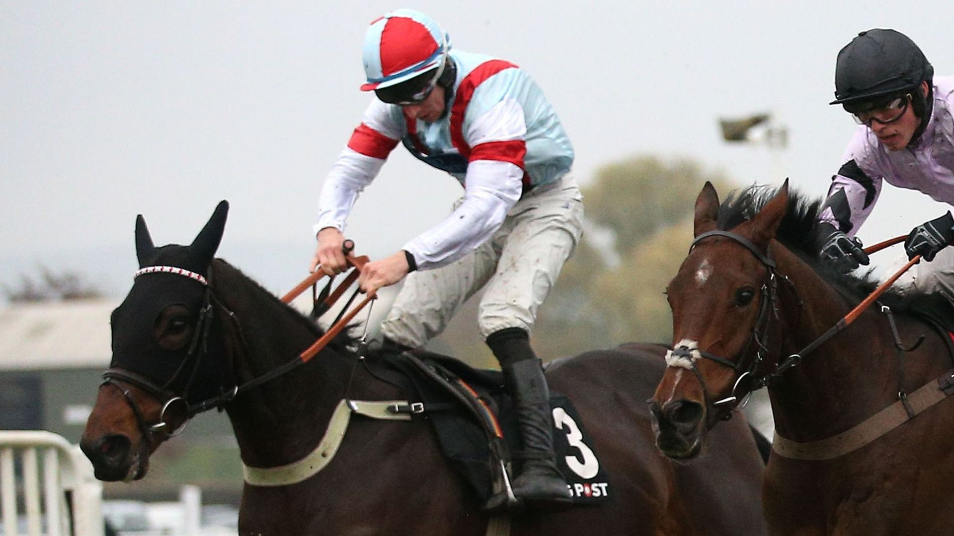 Rouge Vif wins at Cheltenham in October